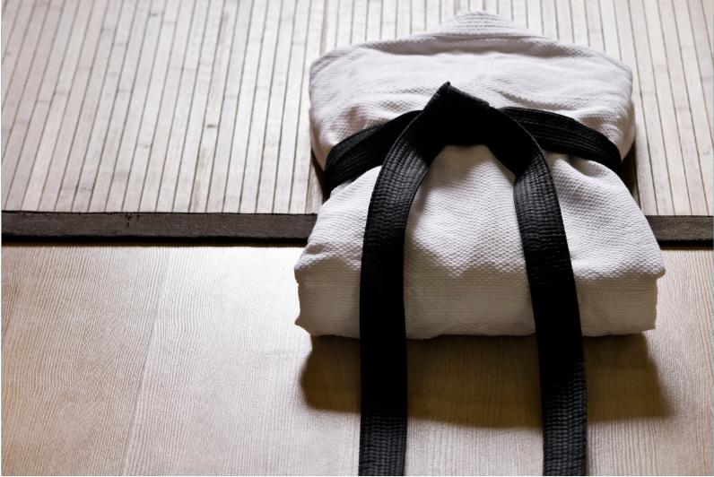 Pourquoi faire du judo ? parce que c'est un atout pour la vie